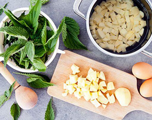 Pan ricette e consigli per spesa e famiglia famila for Cucinare ortica